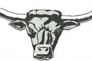 Newcastle Dogie Logo